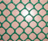 厂家批发塑料平网 养殖网 塑料筛网