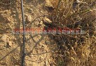 临汾洪洞县果树浇灌产品平均多少钱一亩